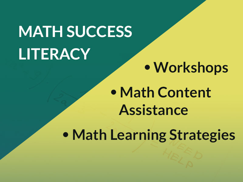 Math Literacy Services overview